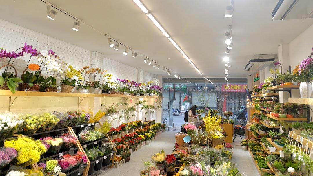 Shop Hoa Tươi Tân Biên Tây Ninh - Cửa Hàng Bán Buôn