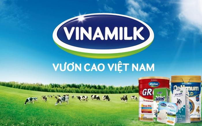 Vì sao sữa tươi Vinamilk dẫn đầu thị trường trong nước?